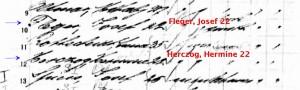 fleger_herczog_arrival