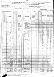 1880 Census David Williams